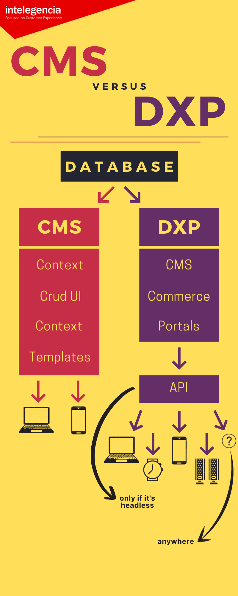 The differences between CMS and DXP platforms.